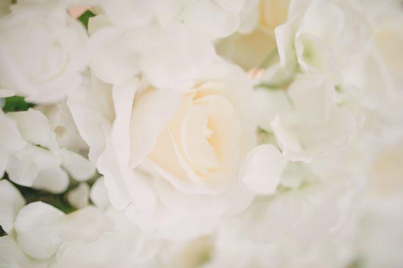 blomstervägg uthyres